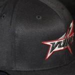 Flatbill Black-cap